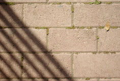 Paving with shadows and leaf Stock Image