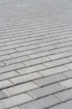 Paving slab background Stock Images