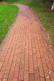 Paving slab through park Royalty Free Stock Photo