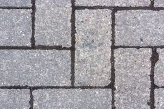 Paving slab Stock Image