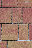 Paving slab red colored. Stock Photography