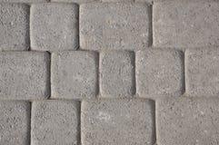 Paving slab. Texture. Stock Image