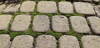 Paving slabs with a grass. Cobblestone striped pathway. Detail of ancient road surface . Grey paving stones closeup. stock image