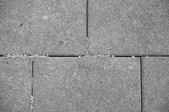 Paving slabs and grass. Stock Photo
