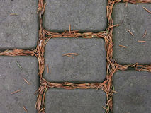 Paving slabs Stock Photography