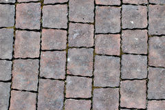 Paving slabs,patterned paving tiles, cement brick floor background. Royalty Free Stock Photos