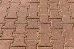 Paving slabs texture stone Royalty Free Stock Photography
