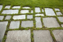 Paving stone Stock Photos