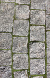 Paving stone Royalty Free Stock Photo