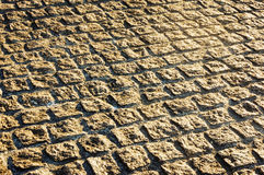 Paving stone bricks Royalty Free Stock Photo