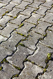 Paving stone Stock Images