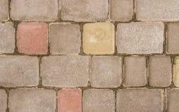 Paving-stone. Stock Photo
