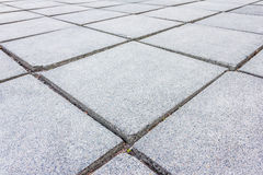 Paving stone path Stock Photography