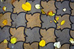 Paving stone vintage road cover with autumn leaves. Paving stone vintage road cover. Stone pavement texture with autumn leaves Royalty Free Stock Photography