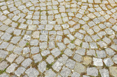 Paving stones. Texture with green grass Royalty Free Stock Photography