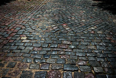 Paving stones. Of an urban street Royalty Free Stock Photos
