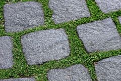 Paving stones and grass Stock Photo