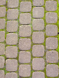 Paving stones on road Stock Images