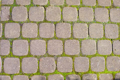 Paving stones on road Royalty Free Stock Image