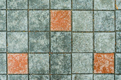 Paving stones on a sidewalk Stock Image