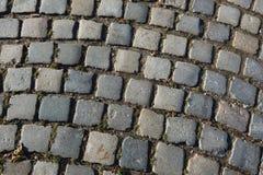 Paving stones texture Royalty Free Stock Photo