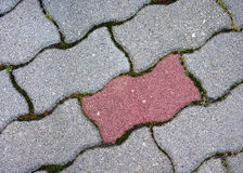 Paving stones. Stock Photos