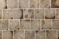 Paving tile made of wood with natural patterns background Stock Photos