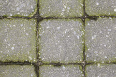 Paving tiles Royalty Free Stock Photos