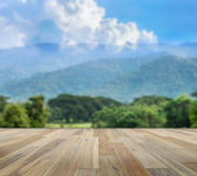 Paving wood floor on the forest backgrounds Royalty Free Stock Photography