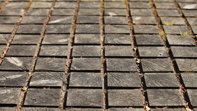Paving wooden walkway Royalty Free Stock Image