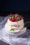 Pavlova με τα φρούτα μούρων Στοκ εικόνες με δικαίωμα ελεύθερης χρήσης