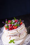 Pavlova με τα φρούτα μούρων Στοκ φωτογραφίες με δικαίωμα ελεύθερης χρήσης