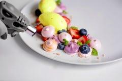 Pavlova | Basil Ice Cream | Blåbärmaräng | Jordgubbemarshmallower Arkivfoton