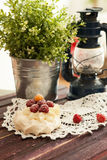 Pavlova cake. Of Pavlova cake with berries stock photo