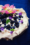 Pavlova Royalty Free Stock Image