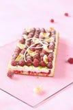 Pavlova för hallonlitchiplommonlimefrukt kaka fotografering för bildbyråer