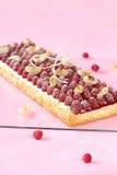 Pavlova för hallonlitchiplommonlimefrukt kaka arkivbilder