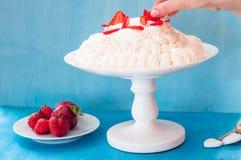 Pavlova kaka på en kakaställning Royaltyfria Foton