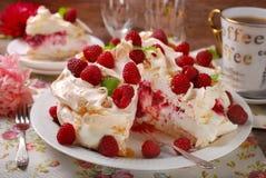 Pavlova-Kuchen mit Himbeeren Lizenzfreie Stockbilder