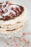 Pavlova layered cake with chocolate and cocoa Royalty Free Stock Image
