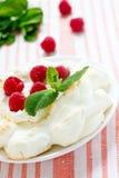 Pavlova merengue met framboos Stock Fotografie