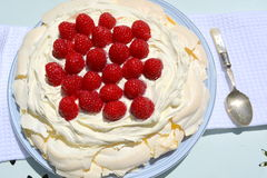 Pavlova Royalty Free Stock Photos