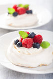 Pavlova meringue cake with cream and berry Stock Images