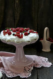 Pavlova Stock Photos