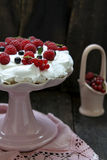 Pavlova Royalty Free Stock Photography
