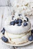 Pavlova tort w zima stylu Zdjęcia Stock