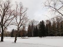 Pavlovsk市公园镇  库存照片