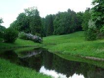 Pavlovsk湖和森林在夏天 库存图片