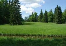 Pavlovsk湖和森林在夏日 免版税库存图片