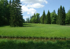 Pavlovsk Lake and forest in summer day Royalty Free Stock Image